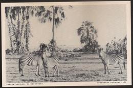 Postal Moçambique - Parque Nacional Da Gorongosa - Zebras - National Park - CPA - Postcard - Mozambique
