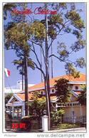 Telecarte Nouvelle Caledonie Musee Noumea Mairie Commune Banque Marchand Drapeau NC116 Cote 20  TB - Nieuw-Caledonië