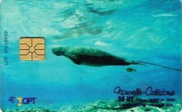 Nouvelle Caledonie Noumea Telecarte Phonecard Opt LNC122 Dugong Vahce Marine Transparente Utilisée BE - New Caledonia