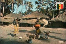 CARTE POSTALE DU SENEGAL - VILLAGE DE BASSE CASAMANCE - Senegal