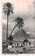 Cairo: The Chefren Pyramid - El Cairo
