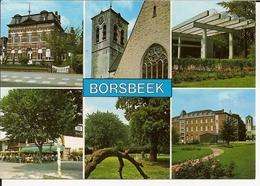Groeten Uit Borsbeek (6 Zichten) - Borsbeek