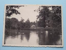 Home Edouard Anseele ASTENE ( Zicht Van Den Vijver ) Anno 1939 ( Zie Foto Voor Details ) ! - Deinze