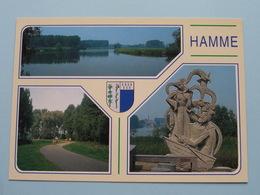 HAMME Overzichtskaart ( Van Hove ) Anno 19?? ( Zie Foto Voor Details ) ! - Hamme