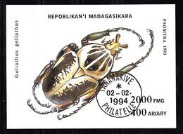 Madagaskar 1994 MI Nr Blok 254 , Kever, Beetle - Madagaskar (1960-...)