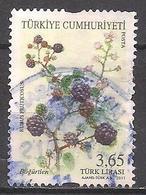 Türkei  (2011)  Mi.Nr.  3917  Gest. / Used  (14ba39) - 1921-... Republiek