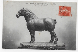 (RECTO / VERSO) GEORGES MALISSARD - INDIGENE DU FOSTEAU - CHEVAL - N° 5005 - CPA VOYAGEE - BELGIQUE - Sculture