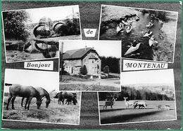 ! - Belgique - Montenau (Amblève-Amel) - Bonjour De ... - Vues Diverses - Amel