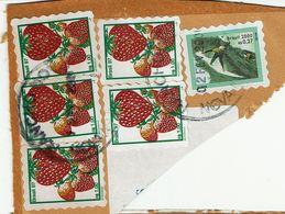 Brazil , Bresil , Brasil , 1997 , 2000 , Fruits  ,  Abacaxi , Papaia , Surf , Nova Igauçu  Postmark - Skateboard