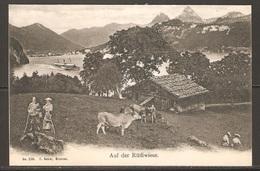 Carte P ( Suisse /  Seelisberg / Prairie Du Grütli ) - UR Uri