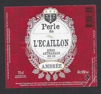 Etiquette De Bière Ambrée  - Perle De L'Ecaillon    -  Brasserie Terre Et  Tradition  à  Quérénaing  (59) - Bière