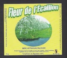 Etiquette De Bière Blonde  - Fleur De L'Ecaillon    -  Brasserie Terre Et  Tradition  à  Quérénaing  (59) - Bière