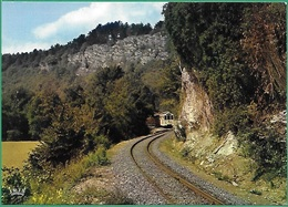 ! - Belgique - Han-sur-Lesse (Rochefort) - Grotte De Han - Tram Panoramique Aux Pieds Des Rochers De Faule - Rochefort