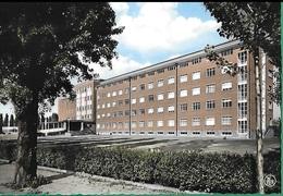 ! - Belgique - Maaseik - Hôpital (Hospitaal) - Maaseik