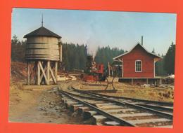 PL/6 CHEMIN DE FER DE LA LOGE DES GARDES ENTRE ROANNE ET VICHY PAR LA MONTAGNE BOURBONNAISE / écrite Timbre Poste 1980 - Trains