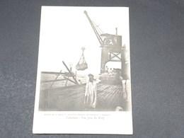 MADAGASCAR - Carte Postale - Tamatave - Une Grue Du Warf - L 19474 - Madagascar