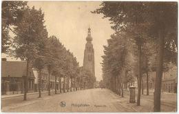 8Eb-669: Hoogstraten - Torenzicht... De Postzegel Is Beschadigd.. - Hoogstraten