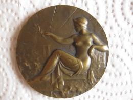 Medaille Exposition Internationale De Montpellier 1927, Femme Nue. - France