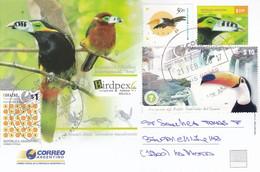 ARASARI CHICO, SELENIDERA MACULIROSTRIS, TUCAN. BIRDPEX. OBLIT 9 DE JULIO 2017. ENTERO ENTIER STATIONERY POSTAL.- BLEUP - Climbing Birds