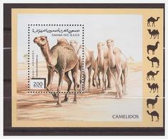0481 Sahara 1996 Kamelen Camels S/S MNH - Autres