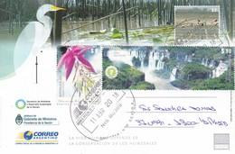 DIA MUNDIAL DE LOS HUMEDALES. RAMSAN. ENTERO ENTIER STATIONERY POSTAL. OBLIT 9 DE JULIO 2018. ARGENTINA.- BLEUP - Environment & Climate Protection