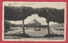 Solre-Saint-Géry - Le Kiosque Et Le Grand'Place - 1963  ( Voir Verso ) - Beaumont