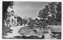 (RECTO / VERSO) LUCON EN 1955 - N° 45 - LE JARDIN PUBLIC - LA SERRE - FORMAT CPA VOYAGEE - Lucon