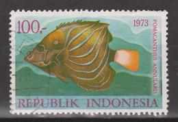 Indonesie Indonesia 758 Used ; Vissen, Fish, Poissons, Pescado 1973 NOW MANY STAMPS OF ANIMALS - Vissen