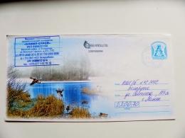 Cover Sent From Belarus Postal Stationery Animals Birds Oiseaux Ducks - Bielorussia