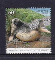 Australian Antarctic Territory  S 183 2010 Macquarie Island 60c Seal,used, - Used Stamps