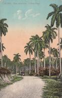 Republica De Cuba - Una Carretera - Cuban Road - 2 Scans - Cuba