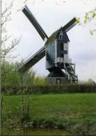 Roosendaal (N.-Br.) - Molen/moulin - Standerdmolen De Hoop, Opgezeild En In Werking Kort Na De Restauratie Van 1994 - Roosendaal