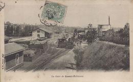 Le Plessis Robinson : La Gare De Sceaux-Robinson - Le Plessis Robinson