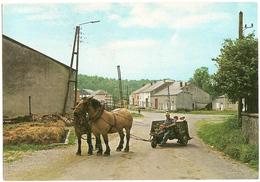 Luxembourg>LAICHE Sur SEMOIS Chevaux Ardennais, 1983 Timbre 8F, Procession Du Saint-Sang, Poste: Verte De Vacances - CPM - Virton
