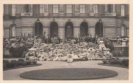 Bruxelles - Carte Photo ALBAN - Funérailles Devant Le Palais Royal-scan Recto-verso - Famous People