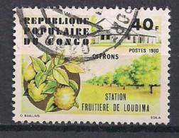 YT N°  606 - Oblitéré - Station Fruitière - Congo - Brazzaville