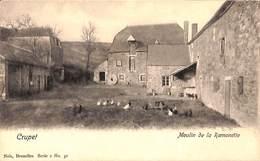 Crupet - Moulin De La Ramonette (animée, Gallinacés, Meule) - Yvoir