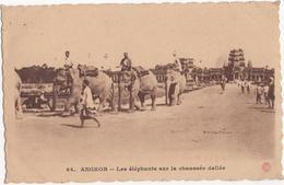 Angkor-Vat - Les éléphants Sur La Chaussée Dallée - & Elephants - Cambodia