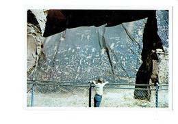 Cpm - NEWSPAPER ROCK Petroglyphs Indian - Pétroglyphe Dessin Symbolique Gravé Sur De La Pierre Dessin Chèvre Pied - Etats-Unis