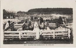 Rep. Argentina - Banadero De Ovejas - & Sheep, Farmer - Argentine