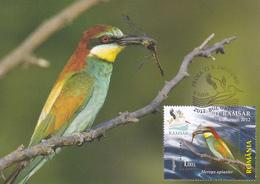 PRIGORIA BIRDS, MAXICARD,MAXIMUM CARD,2012 ROMANIA. - Marine Web-footed Birds