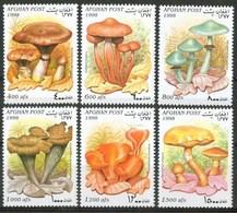 1998 Afghanistan Funghi Mushrooms Champignons Set MNH** B532-95 - Afghanistan