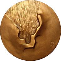 ESPAÑA. MEDALLA F.N.M.T. HOMENAJE AL VOLCÁN. 1.985. ESPAGNE. SPAIN MEDAL MEDAL - Profesionales/De Sociedad