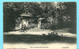 KAPELLEN - Vue Au Château Rubensheide (uitg.: Hoelen) - Kapellen