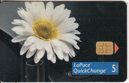 CANADA - Flower, Volkswagen, Tirage 20400, 10/98, Used - Canada