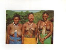 Zulu Belles  ...neuve - Afrique Du Sud