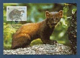 Irland 1992  Mi.Nr. 801 , Pine Marten (Der Edelmarder) - WWF Maximum Card - First Day 9.VII.1992 - Cartoline Maximum