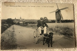 Carte Postale Attelage De Chiens VIENNE En VAR La Poste En Campagne - France
