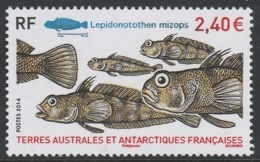 TAAF - Poisson Lepidonotothen Mizops ** 2014 - French Southern And Antarctic Territories (TAAF)