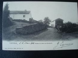 LIERNEUX : Route Du Bois De GROUMONT  En 1904 - Lierneux